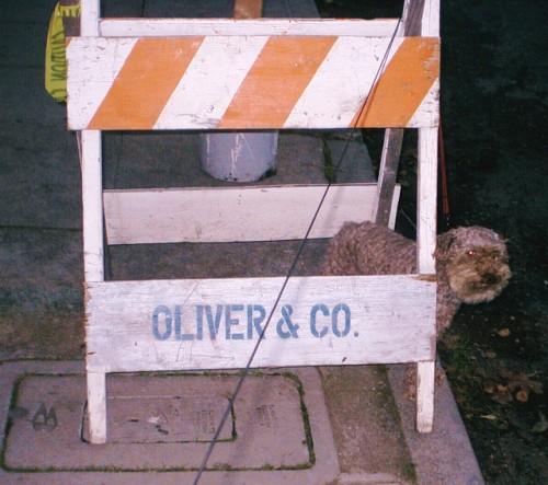 oliver & co em são francisco