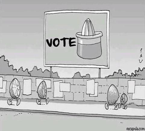 empatia vote espremedor limao